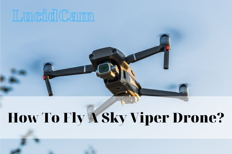 How To Fly A Sky Viper Drone