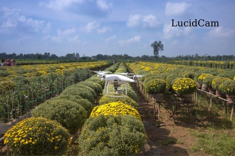 Top-Rated Best Commercial Drones For Agriculture